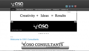 OSO Consultants Website