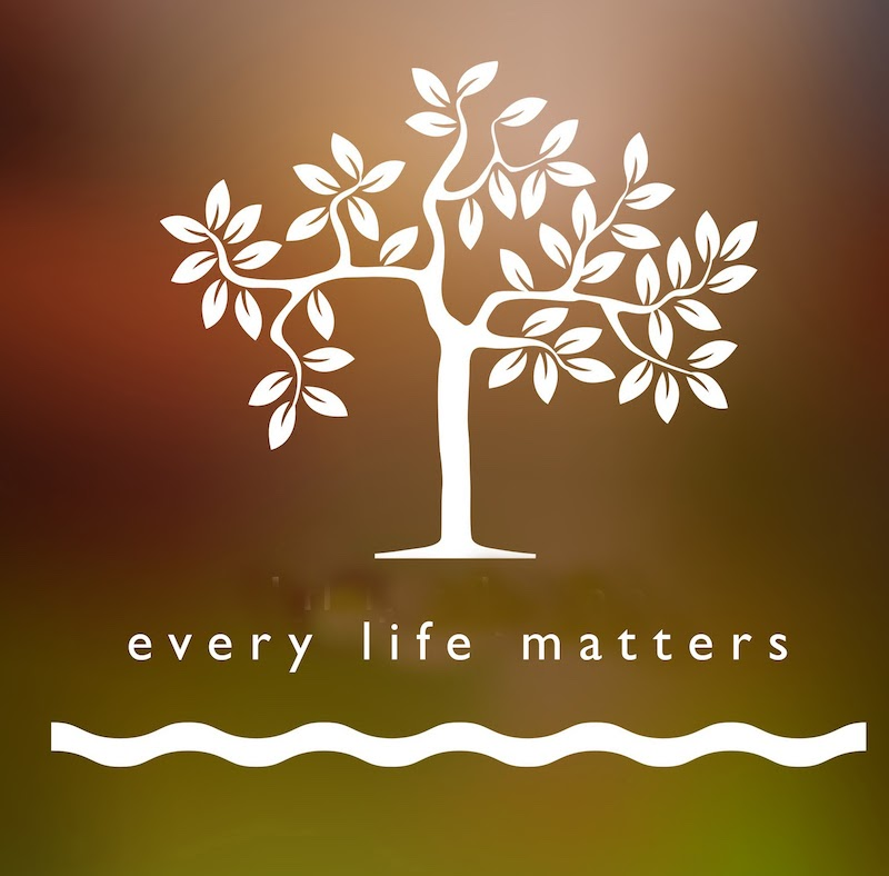 every-life-matters